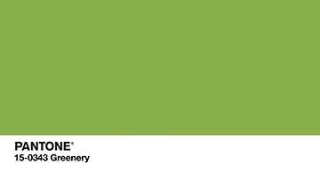 Pantone Color of the Year 2017 -Greenery